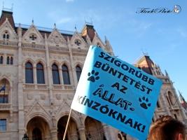 állatkínzás, tüntetés, budapest